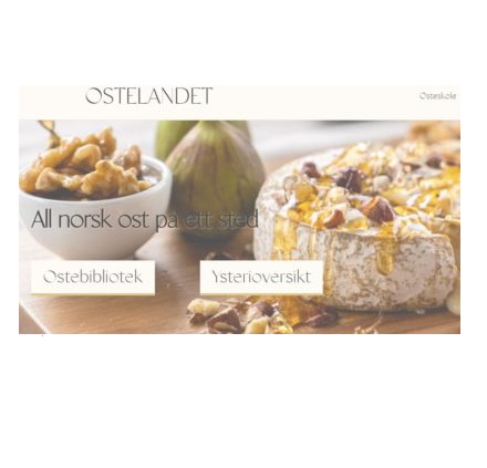 Read more about the article Ostelandet.no